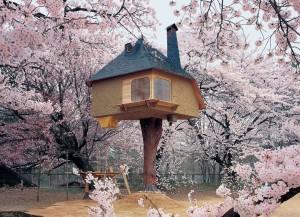 prenez-de-la-hauteur-avec-ses-somptueuses-maisons-perchees-dans-les-arbres58